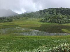 娘たちが見る初めての湿原。  美しかった~(^。^)。