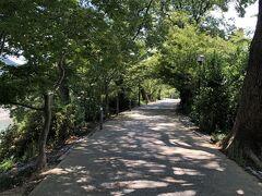 あじろぎの道を通って駐車場へ戻ります。 木陰がうれしい。