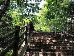 日差しが強くてやや暑さを感じるものの、下界(地元)と違って涼しい!階段を上る足取りも軽いです。