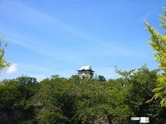 おー!大阪城が見えてきました!(遠いな。。。)