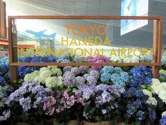 今回は羽田空港から出発です。