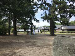 萩博物館で危険生物を見て、近くの公園で遊びました。
