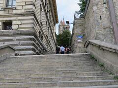 まさか?階段を登らなきゃいけないんですかね?回り道あるんですかね? しょうがないから、えっちらおっちら登りましたよ・・・