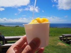 ●絶景6&グルメ4 ミルミル本舗(本店)  最後の〆は、アイスですね。 川平湾からミルミル本舗(本店)へ移動です。  マンゴーと島バナナのアイスをチョイス