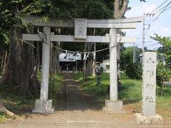 下宿八幡神社の参道のケヤキ並木が立派です。その中でも鳥居のそばの御神木が特に立派で見応えがあり良かったです。