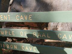 ジェノランケーヴスへ。 見学できる鍾乳洞はいくつかあるようなのですが、その中でも一番美しい(byガイドさん)と言われるオリエントケーヴへ入ります。