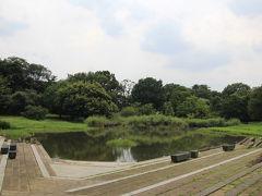 清瀬金山緑地公園は、柳瀬川沿いにある親水公園です。木陰に波打つベンチもあり、ちょっと休憩するのにも適したところでした。柳瀬川で川遊びした方が水着で公園内を歩き回っているのが不思議な光景でした。