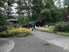 道路を渡り「軽井沢絵本の森美術館」の方に移動してきました。