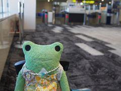 伊丹空港にやって来ました。 伊丹空港どんどん綺麗になってます。 台風接近中だと言うのに空港はすごい人でした。 荷物預けたかったけど大行列に並ぶのが嫌で機内に持ち込むことにしました。 今回から新しいキャリーケースなのです。 少し大きくなって慣れない。 2階のスタバでコーヒーを買おうと思っていたのに…2階は工事中の様で保安検査場に行くしか無い感じになってましたね。 仕方ないので中に入りました。 中の売店で買おうかと思ったけど、新しい売店はお土産屋さんと軽食のレジが一緒で1つしかないので大行列になってました(外のお店が使えなかった影響もあると思いますが) 結局、そのまま時間が来るのを待つことに。