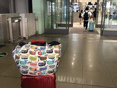 仕事を終えて直行。普段は、バックパッカー用?リュックで旅行するのですが、今回はスーツケース(頼まれた荷物等あったから)。どーも慣れていない私は動きにくかった(u_u)