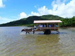由布島へは水牛車に乗って移動