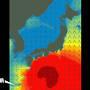 画像は復路日の 日本近海の波の様子をグラフィック化したもの。 青→黄→赤→深紅の順に波が高くなり、なぎ→時化→おお時化→猛烈な時化を示すそうです。  沖縄本島が巨大な防波堤となり、久米島〜那覇の航路を台風の波から守る様子がわかります・・・ 夫は元々全く船酔いしない体質ですが、船酔いする体質の私の為に色々調べてくれてるのね〜 (;´∀`)じぃ〜ん と、思っていましたが・・・  どうやら、那覇到着後すぐに食べに行くつもりの《ステーキ》が、私が船酔いしたが為に予定が狂ってしまうのを恐れての、入念な下調べの様です (; ・`д・´)