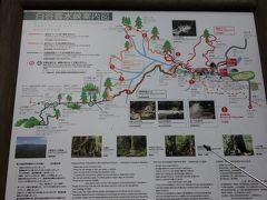 本日は1日白谷雲水峡を歩きます。 本日ガイドしていただくのは「山岳太郎」の代表、渡邊太郎さんです。