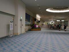 3時間程の空の旅を終えるとそこはもう沖縄  沖縄の空気を感じる間もなくさっさと移動です。 当然那覇空港でもお店は開いていません