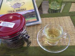 Nathmulls of Darjeeling Tea Cosyでダージリンティーを購入