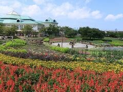 新潟ふるさと村に到着。  ここは道の駅や、レストラン、アスレチック遊具などなど1カ所でいろいろ楽しめる施設。