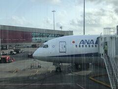 夕方にムンバイ到着。今回は大好きなANAの直行便でインドにやってきました。