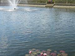 クヴィエトナー庭園 Květná Zahrada - Zámek Kroměříž  噴水のある池には、蓮の花も咲いている。