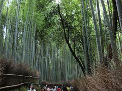 北門を抜けて竹林の小径を歩きます ここだけ涼しい