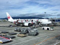 伊丹空港にて撮影 30分ほど遅れて到着しました ミッキー飛行機可愛いです  まずは京都駅までリムジンで移動 トイレに行ったりか(娘)がなかなか帰ってこずドキドキするも、発車1分前に戻りギリで乗車  荷物を京都駅のコインロッカーに預けて電車で嵐山へ…