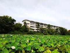 久保田城跡の遺構、お堀に植えられた蓮の花が有名です。