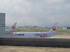 福岡空港には20分ちょっと遅れて8時半頃の到着。 でも快適だったので遅れも気になりませんでした(個人の感想です) 飛行機を降りてから最後にもう一度A350の写真を。