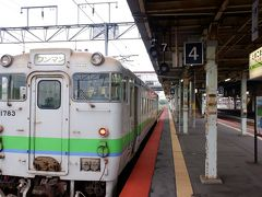 駅に戻り、なんとなく室蘭本線で岩見沢へ、