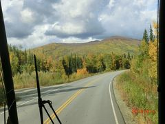 フェアバンクスからチェナホットスプリングへの車窓です。 すでに黄葉が始まっています。 アラスカでは紅葉は地面、地表のブルーベリーの木で、 上の方は黄色だけです。