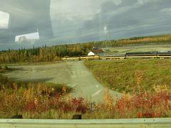 ちょうどアラスカ鉄道が走っていました。 明日は12時半発でデナリ国立公園からアンカレッジまで行きます。