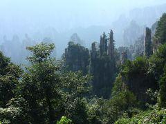 この辺りは石林と呼ばれ、石柱がとても細かった。 細い石柱の上に松が生えて、それが筆のように見える御筆峰は、高さが100メートルもある。