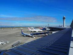 スカイデッキで飛行機を眺めていきましょう。