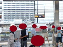 名古屋駅の新幹線ホームにやってきました。   新幹線に乗るのは5年ぶり