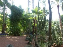マジョレル庭園 イブサンローラン造園。サボテン、竹、椰子の木。不思議な感じ。花も建物も綺麗。