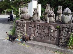 新島村スポーツ広場に石の動物園なるものがありました