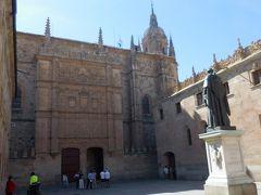 最初にやってきたのはサラマンカ大学。1534年に造られた正面入り口はプラテレスコ様式様式の傑作で、ファザードには3段にわたって彫刻があります