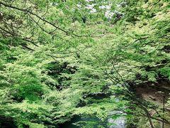 この遊歩道を歩いて行くと道場六三郎氏監修の甘味処があるらしい。