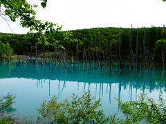 十勝岳の登山口にもほど近い、美瑛の「青い池」に立ち寄ってみました。 とよぬか山荘から2時間40分くらいかかり、運転に疲れました。 「青い池」は、曇っていたせいか写真には綺麗に映りませんでしたが、実際は青くて綺麗でした。