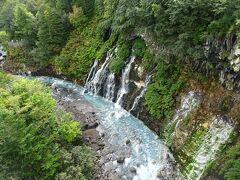 橋の上から「白ひげの滝」を観賞。 青い池と同じく水が青い。