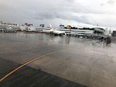 台風接近中の福岡空港へ