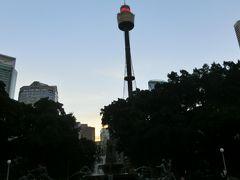 反対側を向くと、目的地の【シドニータワーアイ(Sydney Tower Eye+Skywalk)】がお目見え。シドニーで一番高い建造物で309mあるそうです。1975年に建設が始まり、1981年から一般に公開されてるんだって。