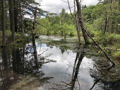 大正池みたいです。そこの小さい番?  岳沢湿原だそうです