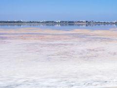 まずは、空港近くにあるラルナカ塩湖へ。 キプロスでは2番目に大きい塩湖。 冬はフラミンゴの飛来地ですが、夏は干上がって塩が見えています。 今は塩の収穫は行われていないそうです。