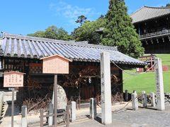 春の風物詩である修二会(お水取り)の儀式では、閼伽井屋の若狭井から水が汲まれ、十一面観音に捧げられます。