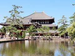 池越しに見る大仏殿が美しいですね。