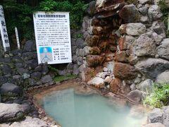 血の池地獄の隣は龍巻地獄 30-40分間隔の間欠泉。7分前に噴出したとのことであったため、待たずに昼食→高崎山とした。