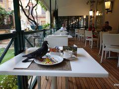 鳩も欲しがるホテルの朝食ビュッフェ ホテル クイリナーレ Hotel Quirinale ローマ