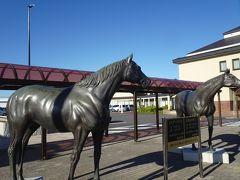 ここ七戸は競走馬の産地として有名。 道の駅にも2頭のダービー馬の像がありました。 ヒカルメイジとフェアーウィン。いずれも昭和30年代の優勝馬。 最近は北海道の胆振・日高地方が生産地の主力のようですが...
