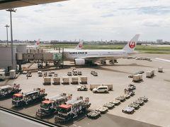往路はJAL便を利用。 JAL515 12:35羽田発。 国内旅行はなんだか久しぶり~!楽しみ!