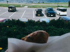 チェックアウト時間までゆっくりホテルで過ごし、それでは札幌に向かいますかっ!  途中、洞爺湖畔の「わかさいも本舗」に立ち寄り、揚げたての「いもてん」をパクリ。
