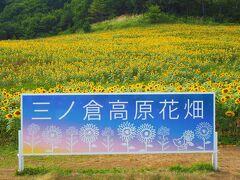 ちょっと訪問には遅い時期になっちゃいましたが、 喜多方に行ったなら「三ノ倉高原花畑」のひまわりを見てみたかったので行きました